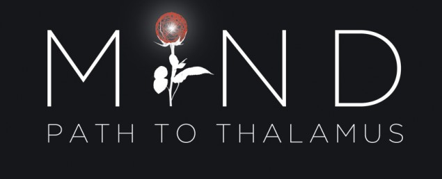 Mind-path-to-thalamus-Logo-635x258